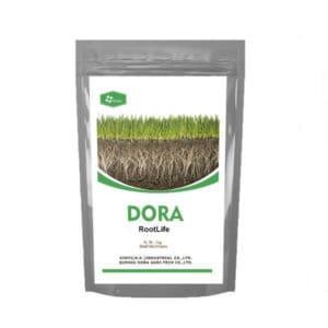 rooting fertilizer