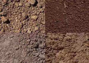 soil problem