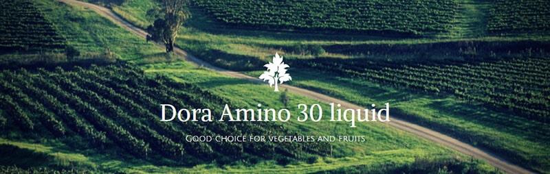 Dora Amino 30 liquid