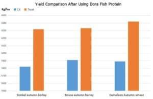 Field-trial-of-Dora-Fish-Protein