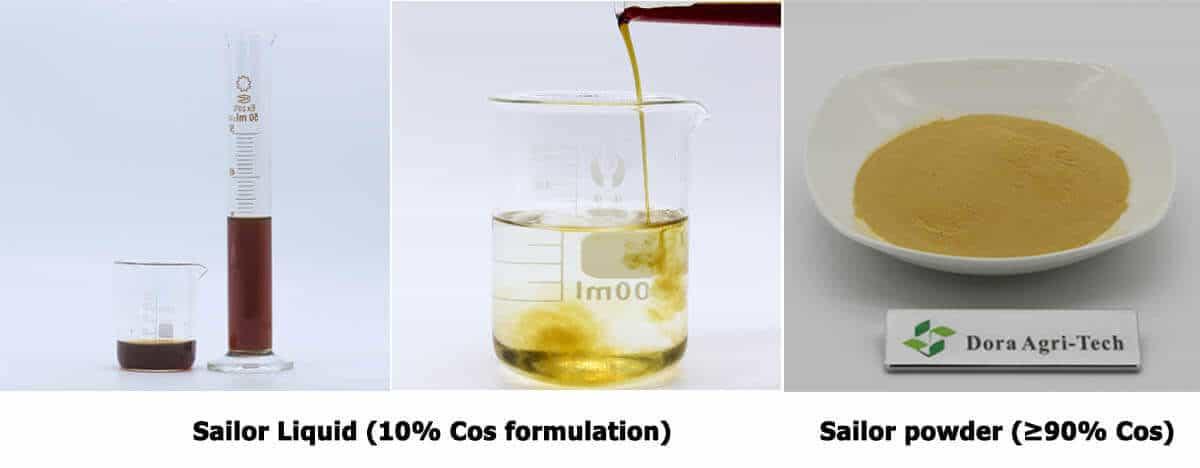 chitosan oligosaccharide product