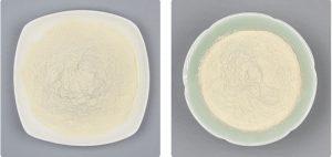 Bacillus Mucilaginosus