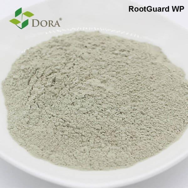 Rootguard WP trichoderma wettable powder