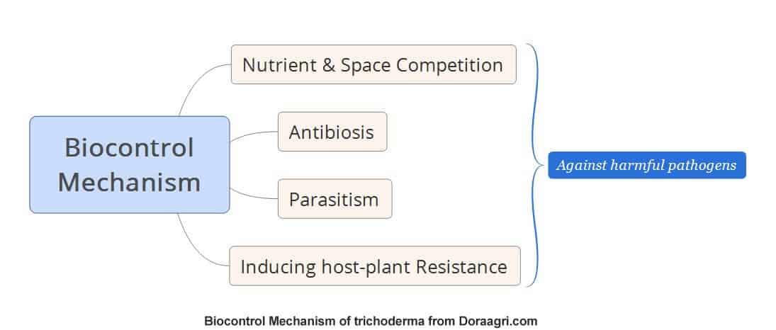 biocontrol mechanism