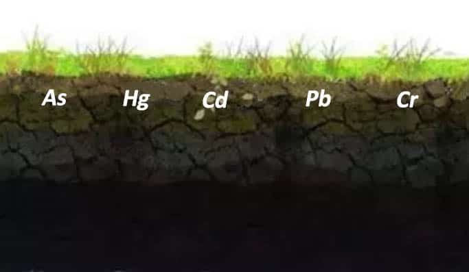 heavy metal pollution soil