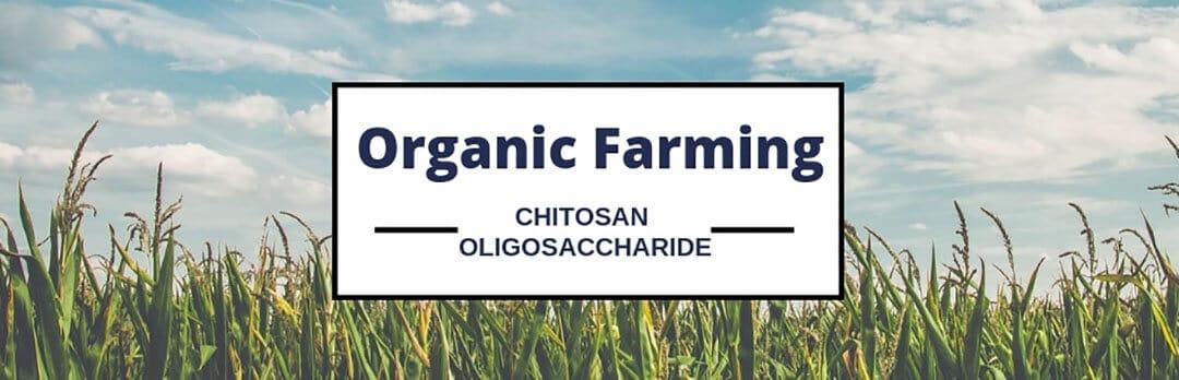 Dora Chitosan oligosaccharide