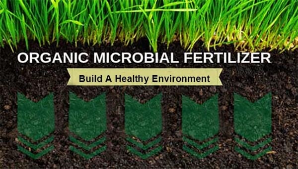 Biofertilizer for lawn