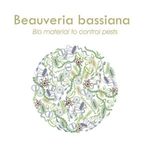 beauveria bassiana products